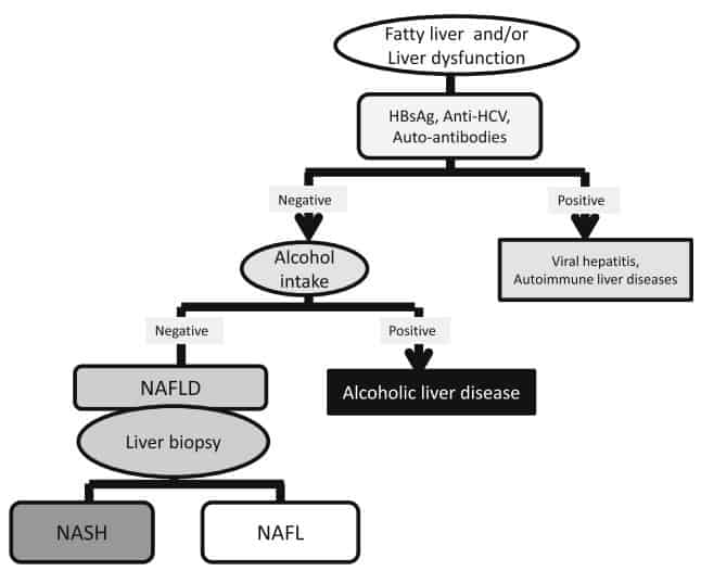 Alur diagnosis NAFLD