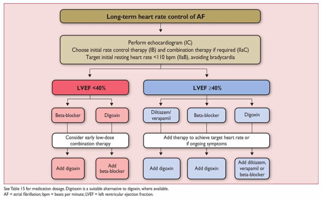 Pemilihan obat untuk rate control jangka panjang pada atrial fibrilasi