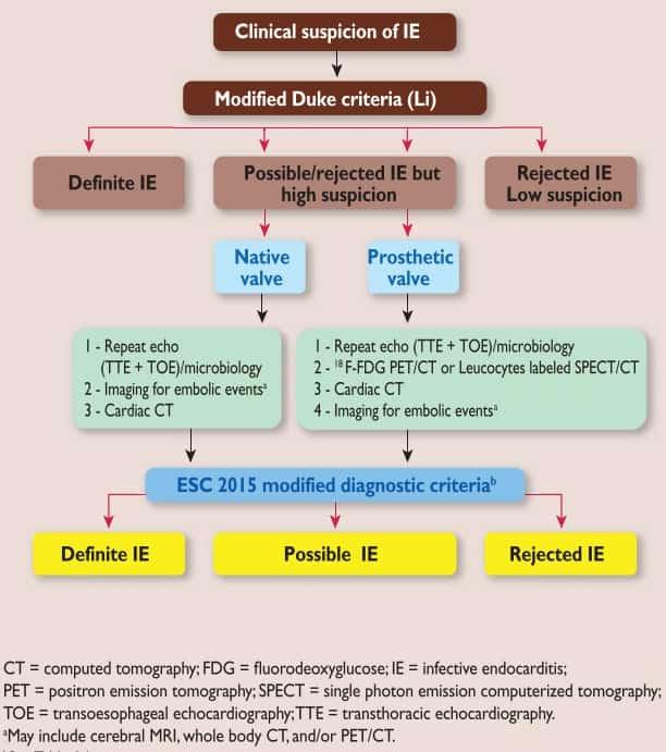Kriteria diagnosis infective endocarditis menurut Duke's criteria