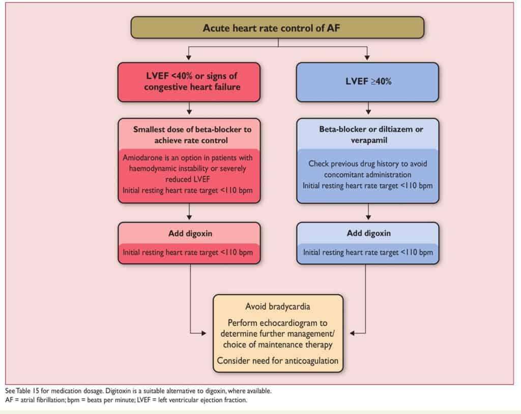 Rate control pada AF onset akut