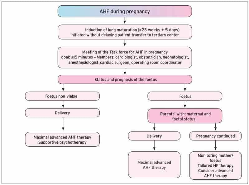 Pertimbangan terminasi kehamilan dalam kondisi kardiomati pada kehamilan