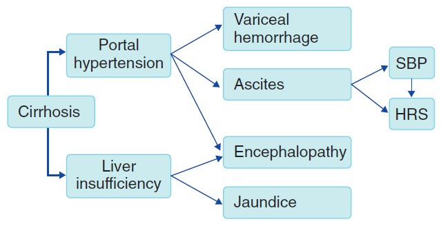 Patofisiologi sirosis hati sebagai penyebab hipertensi portal dan insufisiensi hati