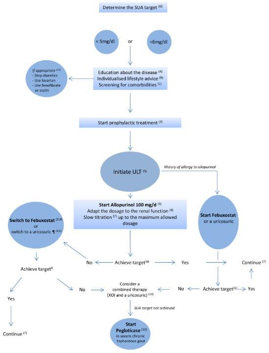 Alur tatalaksana pengobatan hiperurisemia