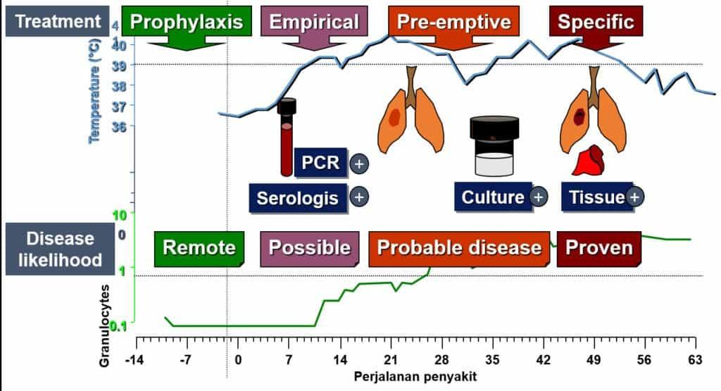 Tahap diagnosis infeksi jamur invasif