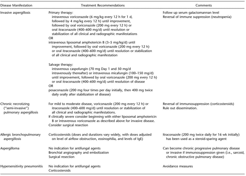 Jenis manifestasi klinisi infeksi Aspergillus spp
