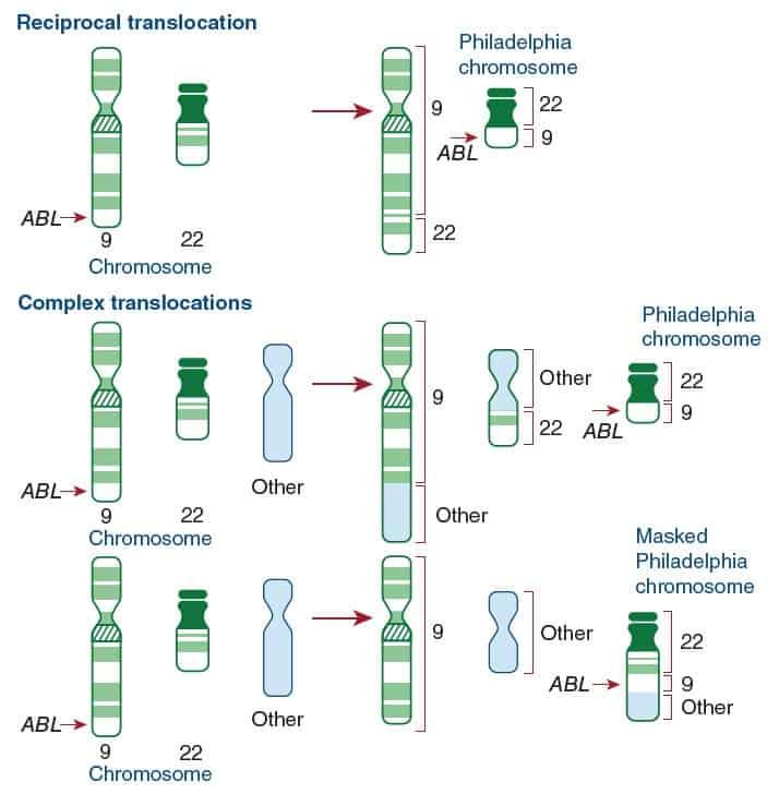 Gambaran sitogenetik pada CML