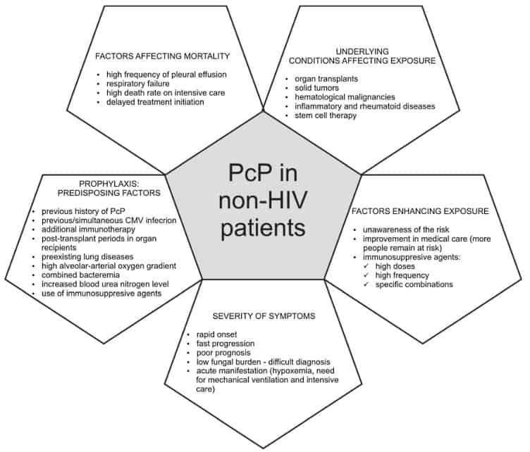 PCP pada pasien non HIV