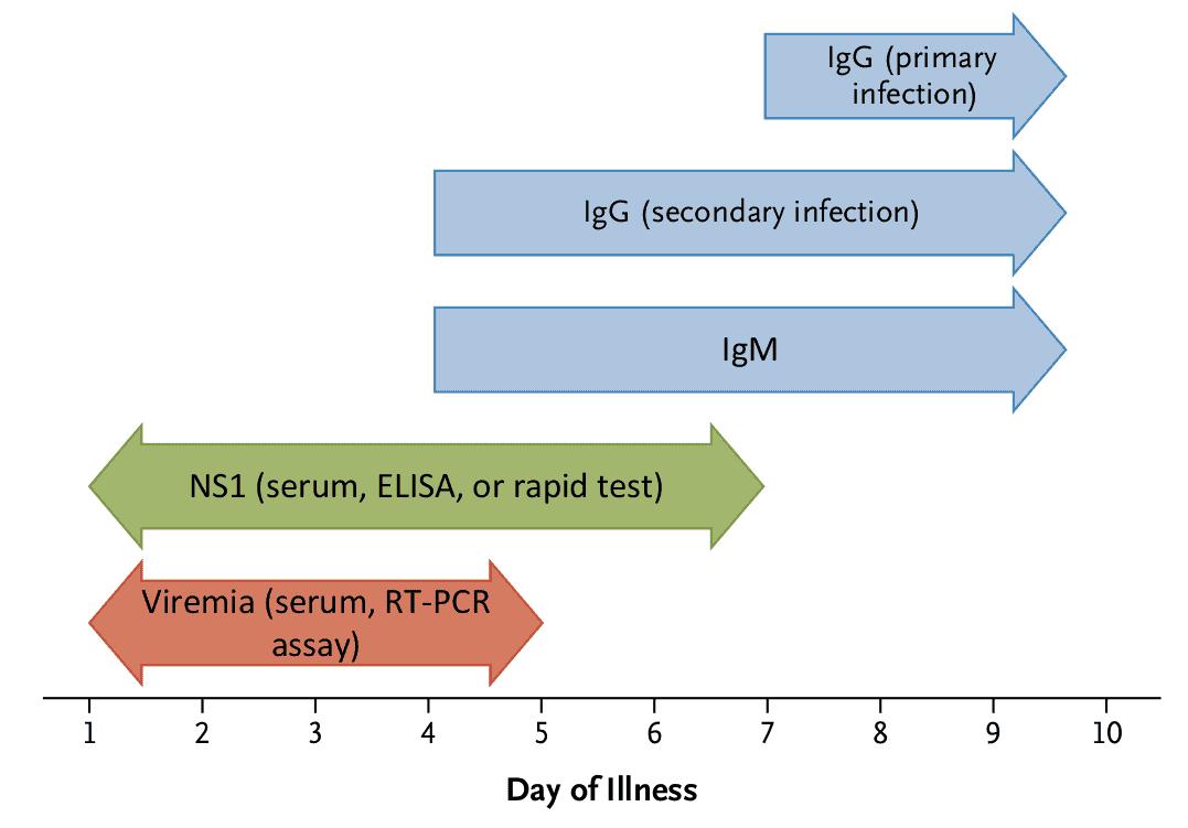 Metode pemeriksaan diagnosis untuk infeksi dengue