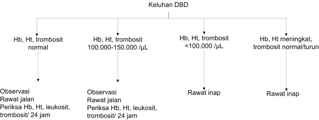 Protokol 1 untuk kasus tersangka DBD tanpa syok