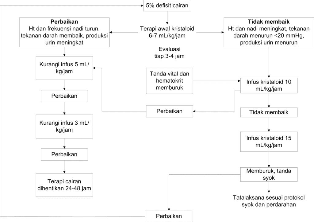 Skema terapi infeksi dengue dengan peningkatan hematokrit ≥20%
