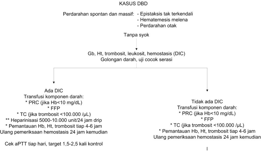 Skema tatalaksana DBD dengan perdarahan