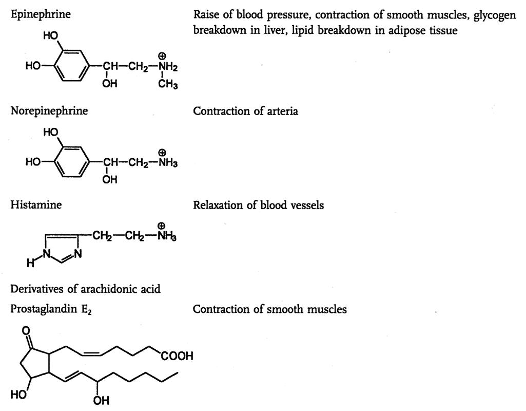 Hormon non peptida yang memiliki reseptor transmembran