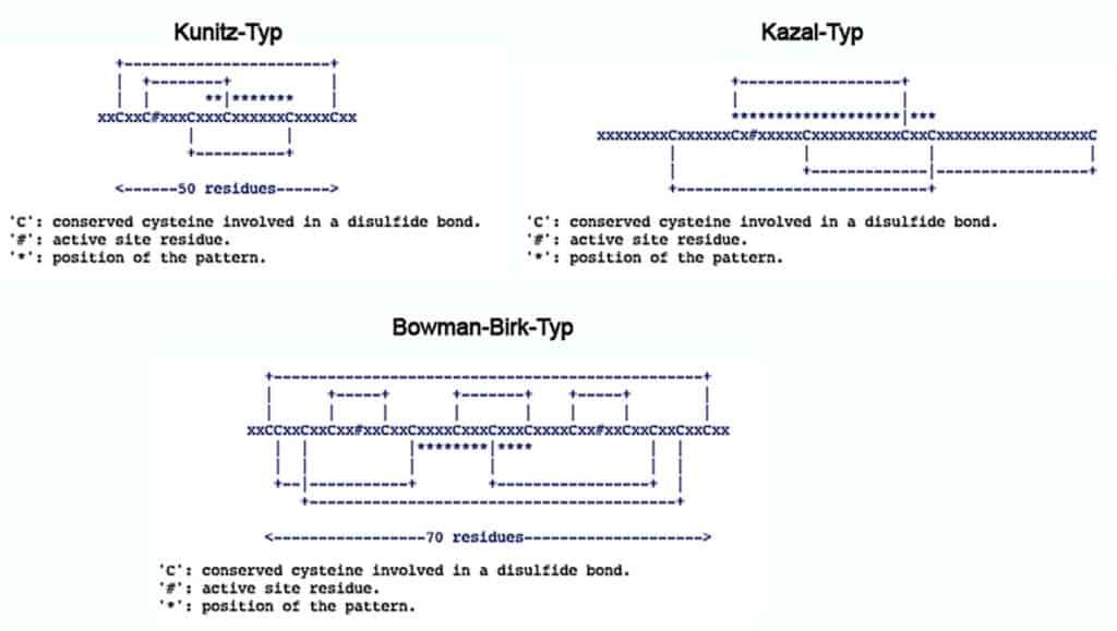 Contoh inhibitor serine proteinase