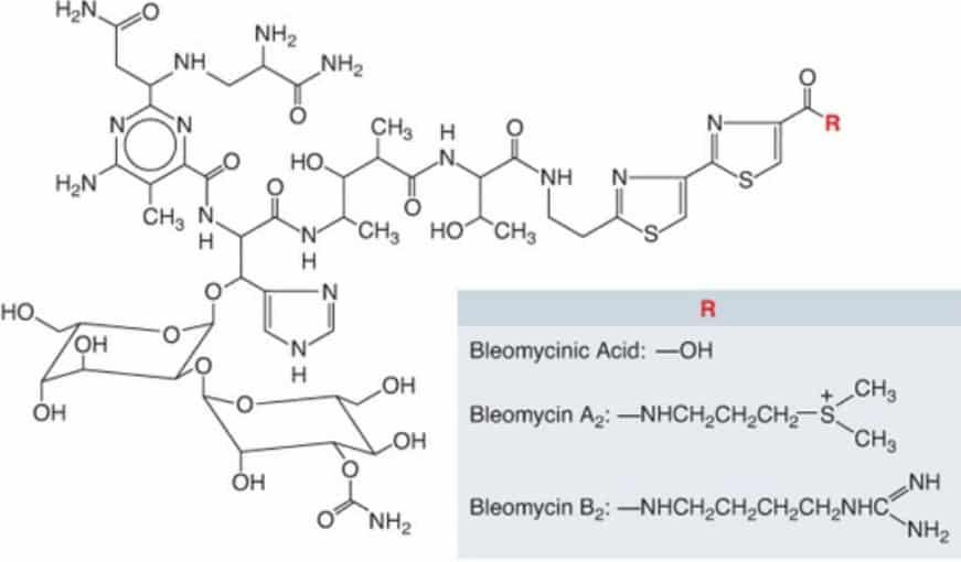 Gambar struktur molekul bleomycin