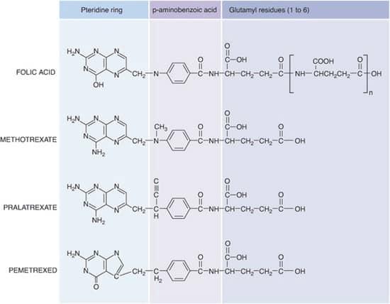 Perbandingan antifolat dengan asam folat