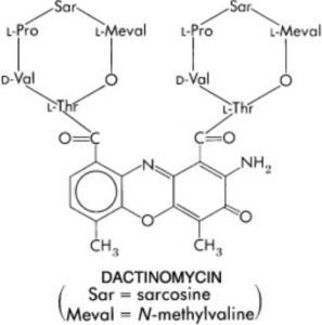 Struktur molekul dactinomycin