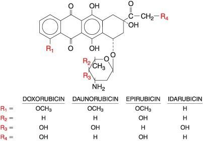 Gambar struktur anthracycline