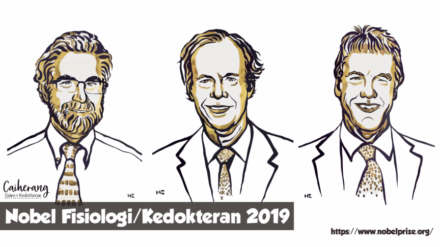 Penerima hadiah Nobel Fisiologi/Kedokteran 2019: William G. Kaelin Jr, Sir Peter J. Ratcliffe, dan Gregg L. Semenza