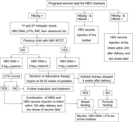 Algortime pemberian terapi untuk hepatitis B pada kehamilan