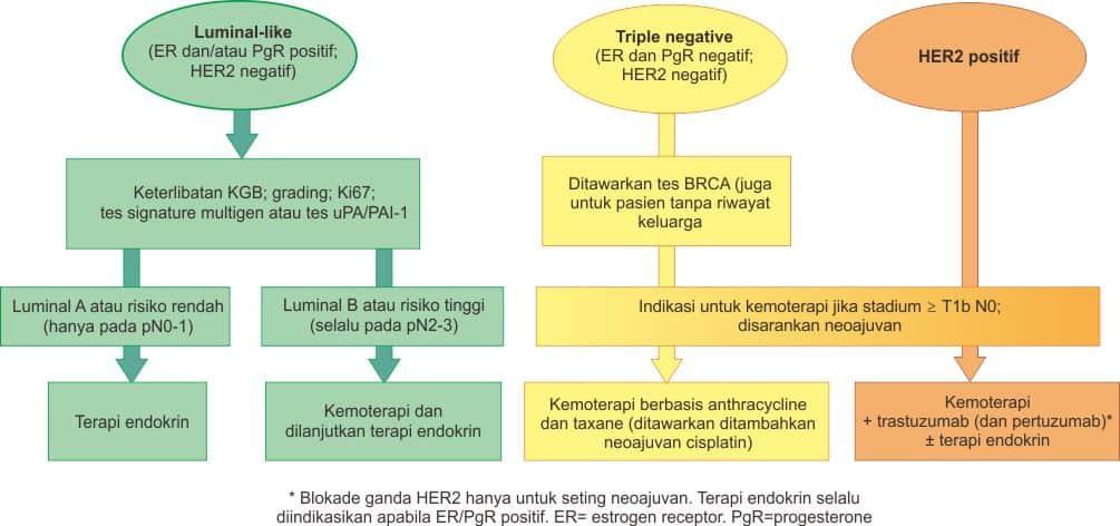 Terapi sistemik pada kanker payudara stadium dini