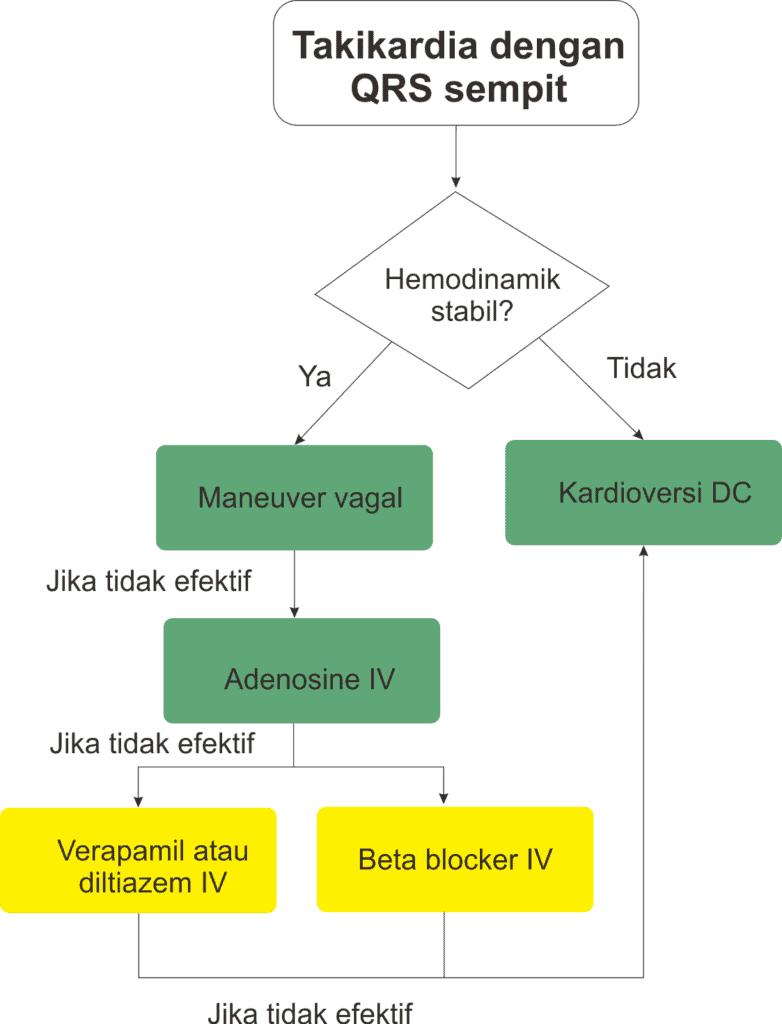 Algoritme penanganan akut takikardia reguler dengan QRS sempit