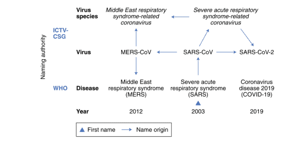 Penamaan virus dan penyakit pada SARS, MERS, dan COVID-19
