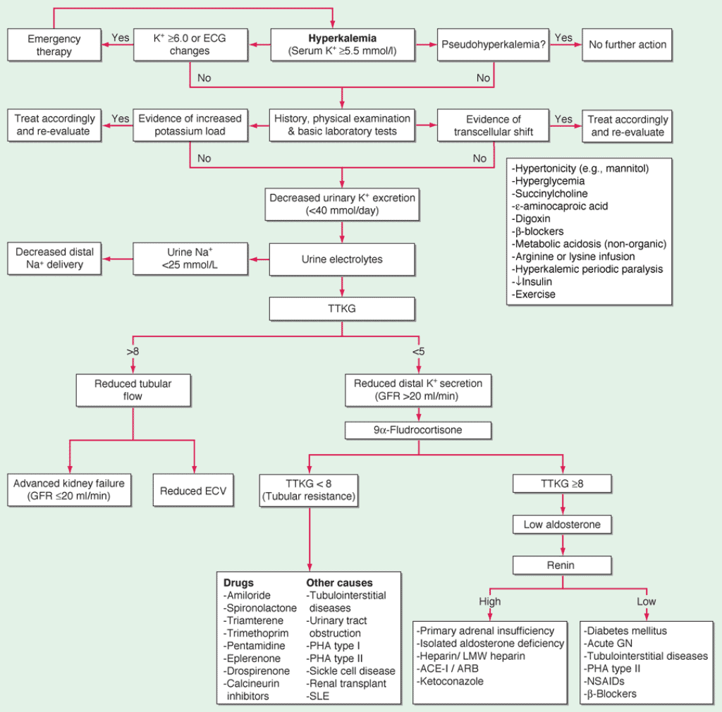 Pendekatan diagnosis hiperkalemia