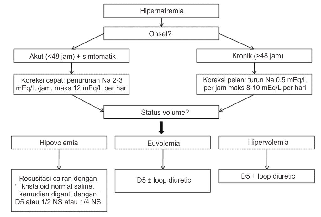 Alur tatalaksana hipernatremia