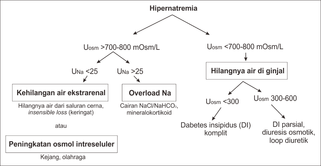 Pendekatan diagnosis hipernatremia