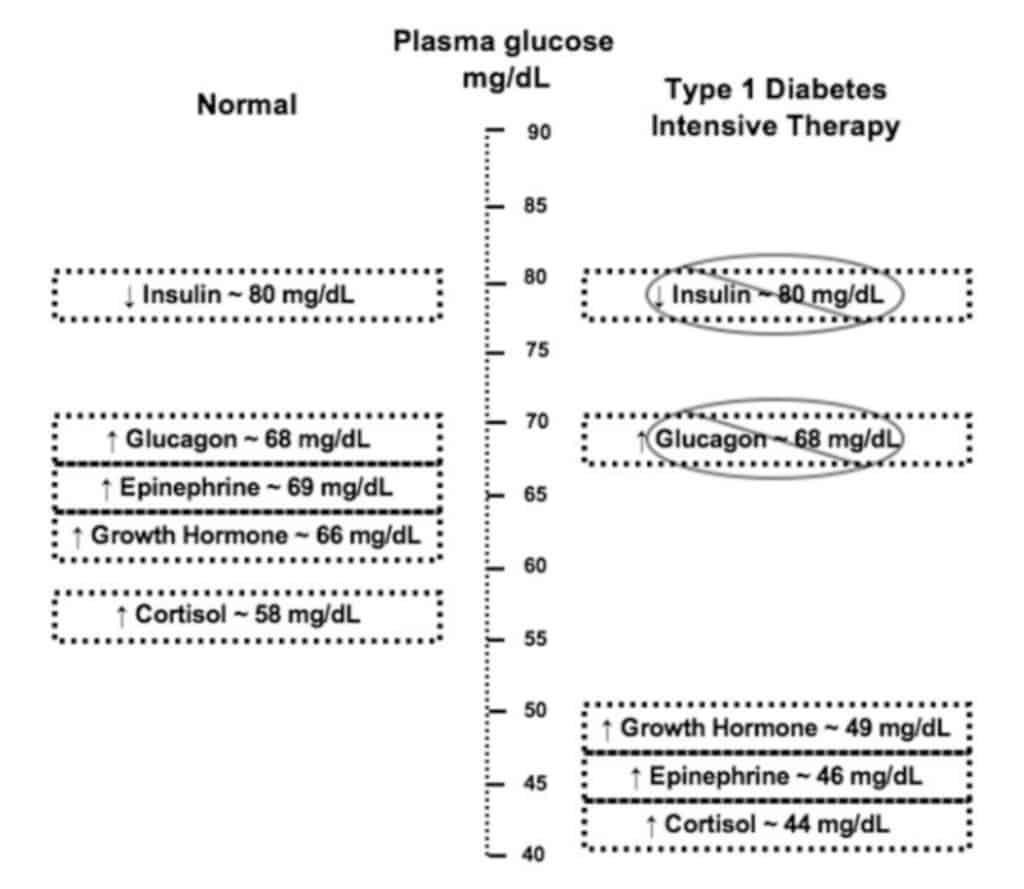 Respon penderita diabetes tipe I terhadap hipoglikemia dibandingkan subjek normal.