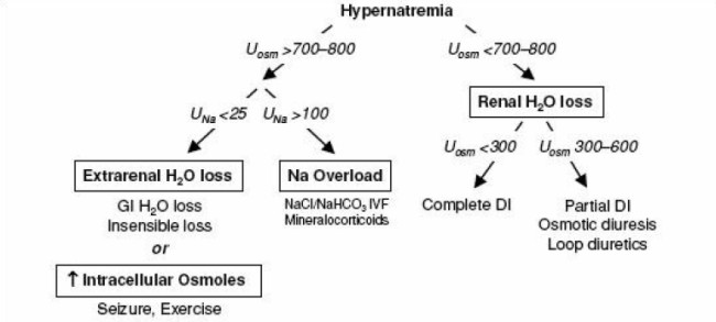 Approach to the diagnosis of hypernatremia.