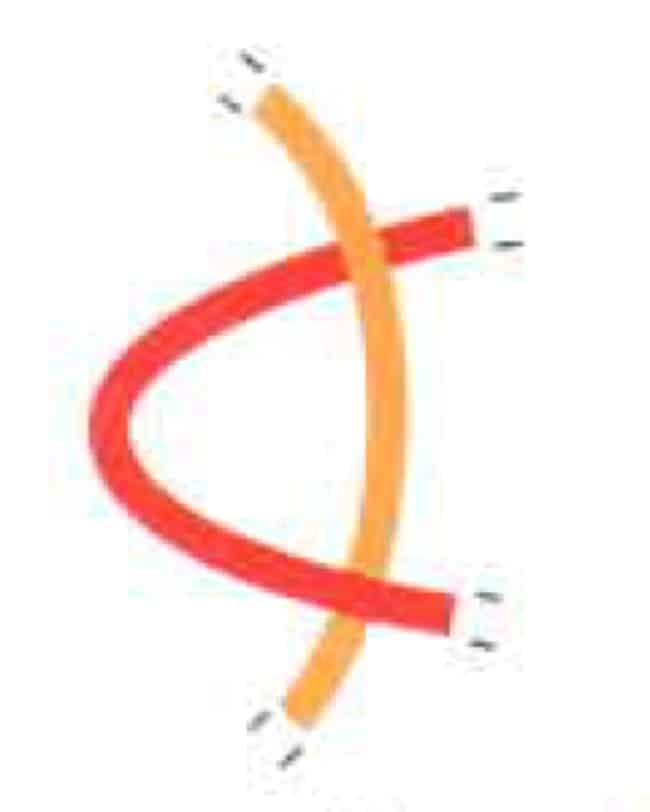 Untaian DNA yang bertemali