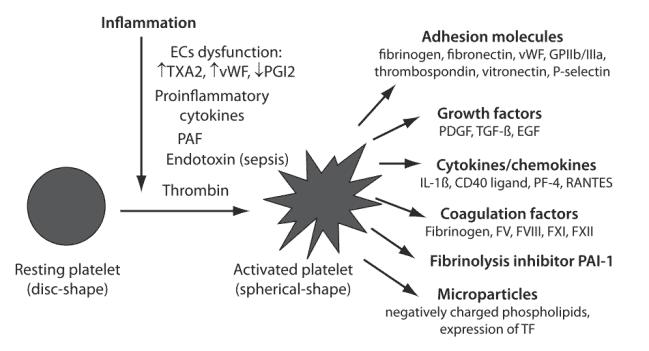 Pengaruh fungsi trombosit pada sistem fibrinolitik