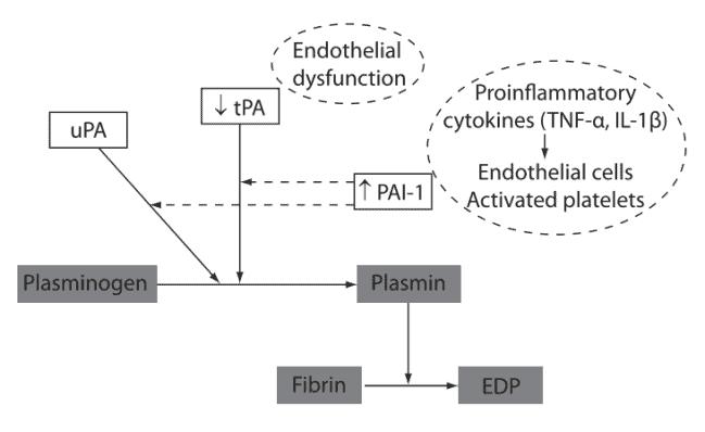 Penekanan aktivitas sistem fibrinolitik oleh inflamasi