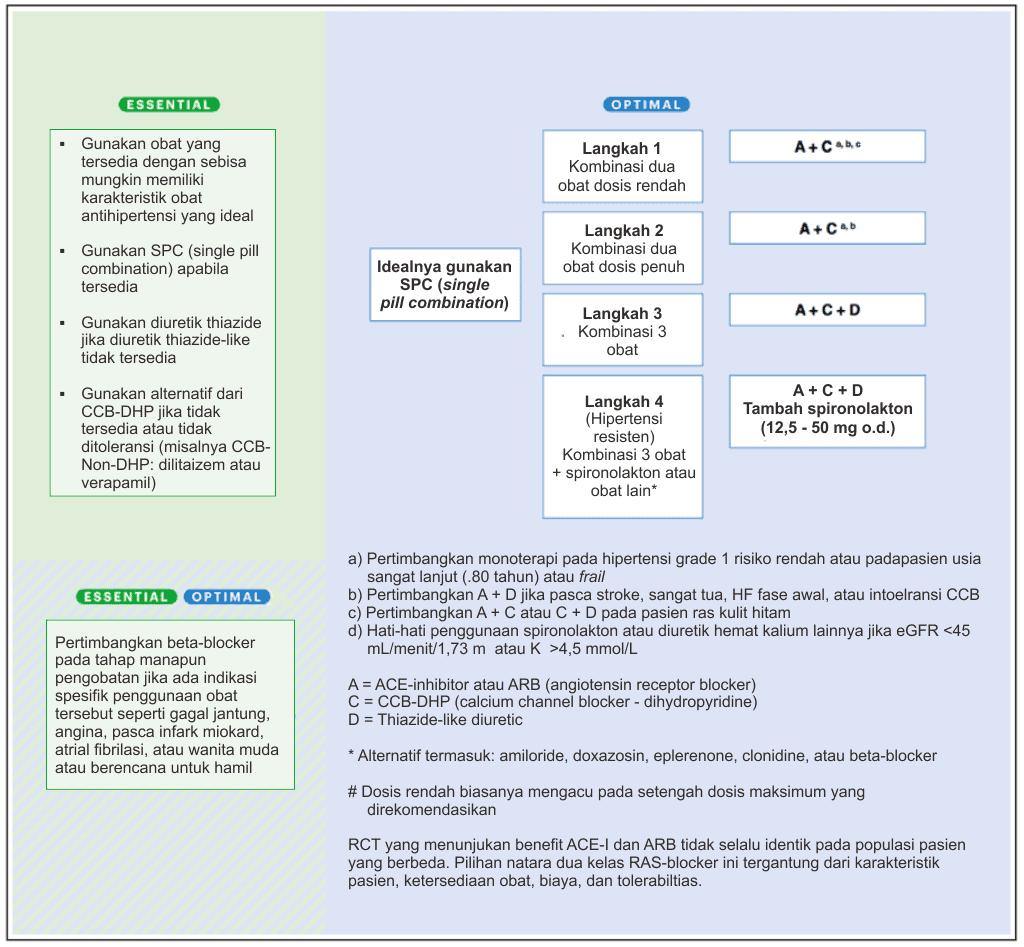 Strategi pengobatan hipertensi
