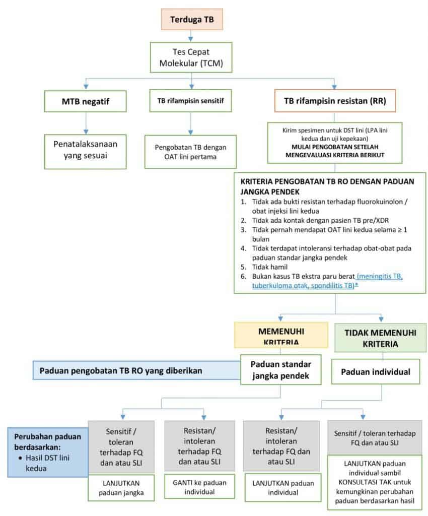 Alur tatalaksana TB resisten obat