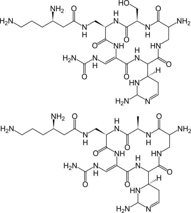 Struktur capreomycin