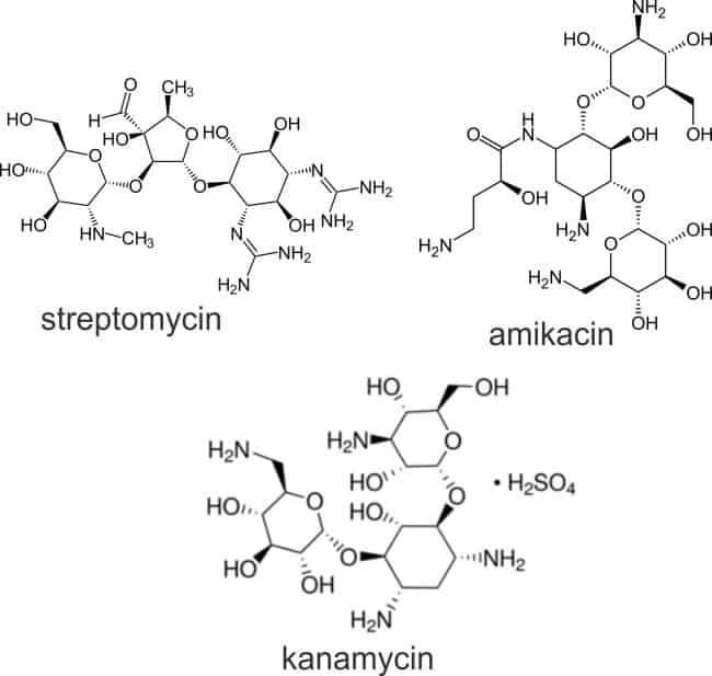 Struktur streptomycin, amikacin, dan kanamycin