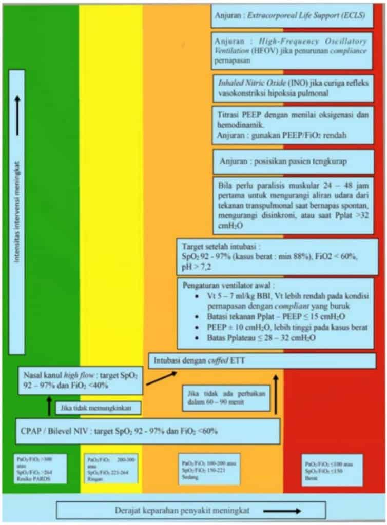 Algoritma tatalaksana ARDS pada anak dengan infeksi Covid-19