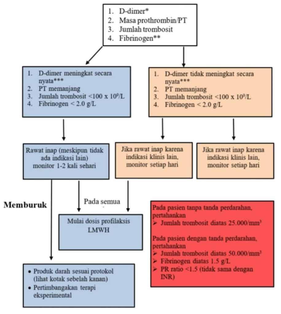 Algoritma tatalaksana koagulasi pada COVID 19 berdasarkan marker laboratorium sederhana.