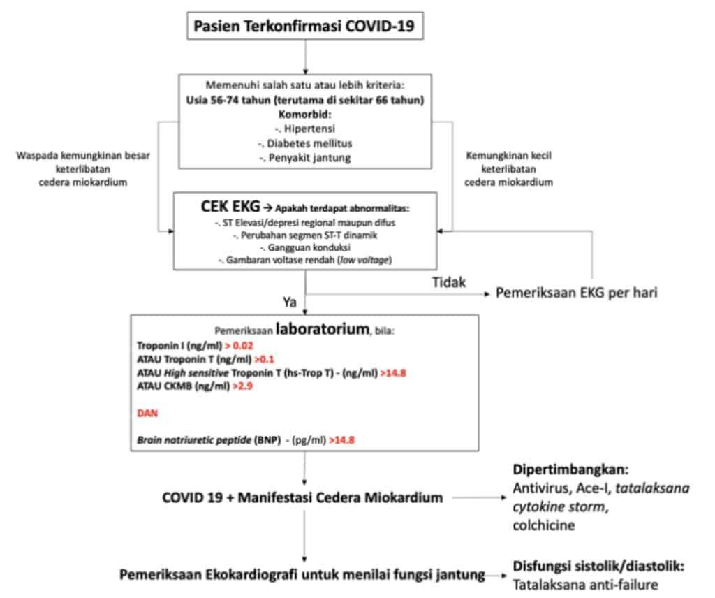 Bagan alur diagnostik dan tatalaksana cedera miokardium akibat Covid-19