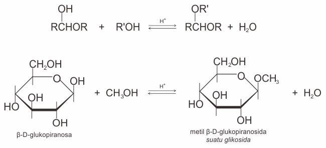 Contoh reaksi pembentukan glikosida