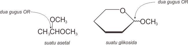Dua gugus OR pada karbon 1 suatu asetal dan glikosida