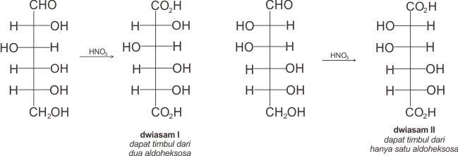 Dwiasam I dapat berasal dari dua aldoheksosa ((+)-gulosa dan (+)-glukosa) sedangkan dwiasam II hanya mungkin berasa dari satu aldoheksosa