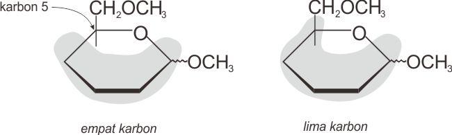 Karbon 5 mengikat gugus OH dalam glikosida terhidrolisis