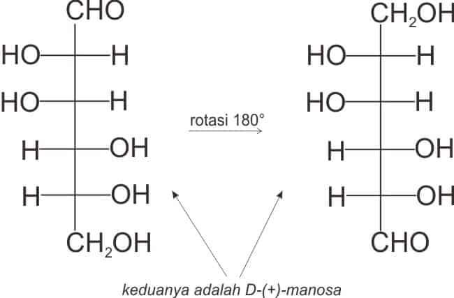 Menilai monosakarida penghasil dwiasam dengan rotasi 180°. Pada manosa, rotasi tetap menghasilkan manosa