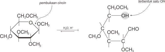 Hidrolisis asetal menghasilkan satu gugus OH (hidroksil)