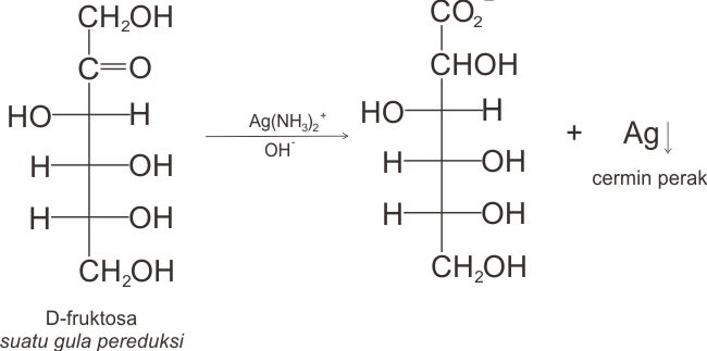 D-fruktosa merupakan gula pereduksi, bereaksi dengan reagensia Tollens.