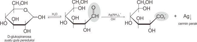Reaksi gula pereduksi dengan reagensia Tollens
