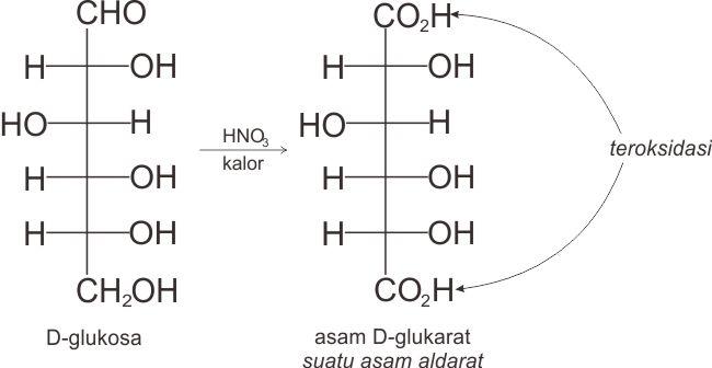 Reaksi pembentukan suatu asam aldarat, yakni dari D-glukosa menjadi asam-D-glukarat